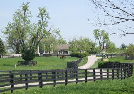 Horse farm in Lexington, Kentucky